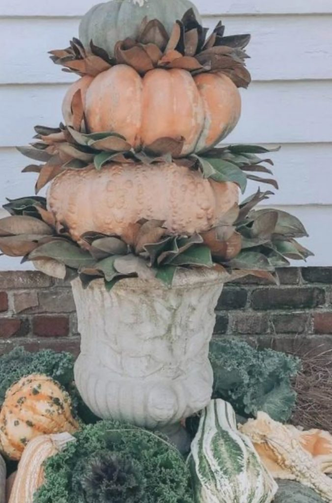 This stunning pumpkin topiary was made with magnolia leaves, heirloom pumpkins and vintage urn.